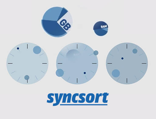 Syncsort Video Production